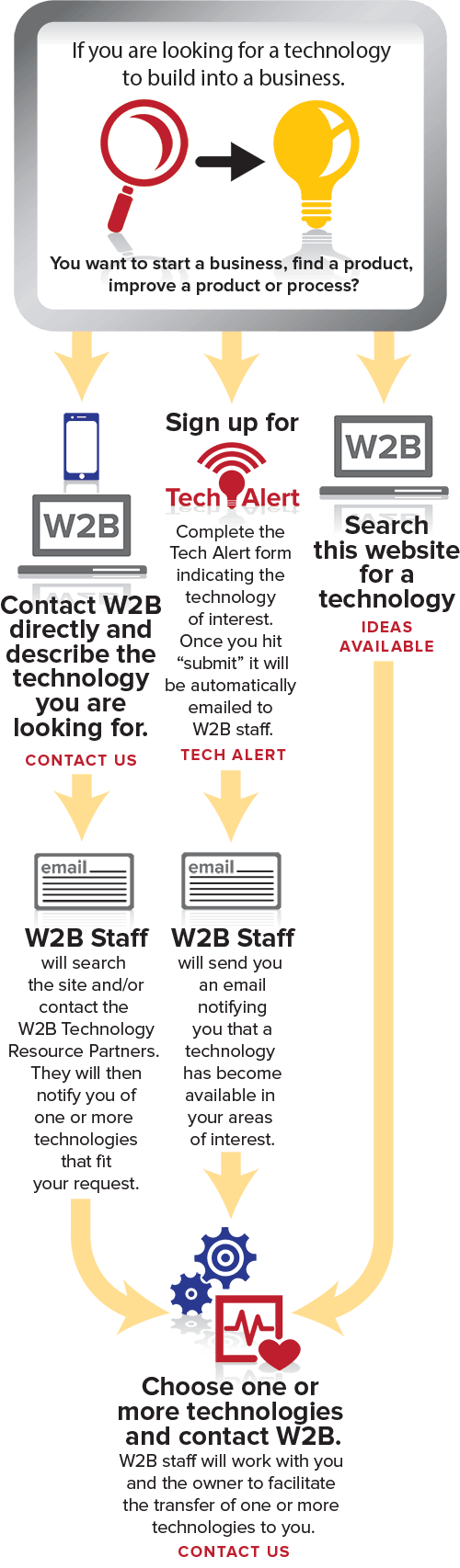 Infographic - Looking for Technology (Vertical)